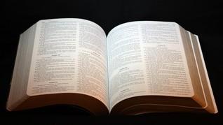 Bulan Kitab Suci Nasional Katolik: Sejarah dan Tema 2020