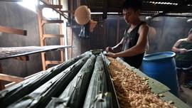 Pertama dalam Sejarah, Indonesia Punya Pabrik Tempe di China