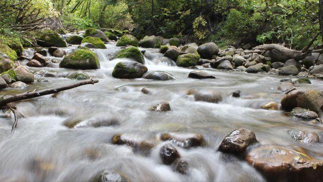 Ratusan siswa SMPN 1 Turi terseret arus sungai akibat air yang meluap karena hujan deras yang telah diperkirakan sebelumnya.