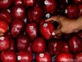 Mengenal Listeria monocytogene, Bakteri Kontaminan Apel Impor