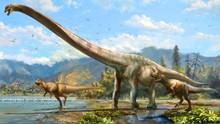 4 Hal yang Terjadi Saat Asteroid Musnahkah Dinosaurus