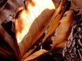 Dibom ISIS, 100 Ribu Buku Penting di Perpustakaan Irak Hangus