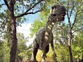 Ilmuwan China Temukan Spesies Dinosaurus Bersayap Kelelawar