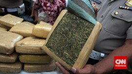 Polisi Bongkar Penyelundupan Ganja 65 kg Bermodus Paket