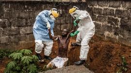 Ebola Kembali Mewabah di Kongo