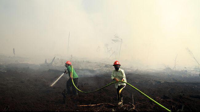 Kebakaran hutan dan lahan terus terjadi dan menimbulkan asap pekat, salah satu penyebabnya pemerintah tak bisa menekan pengadilan agar lekas mengesekusi pelaku.