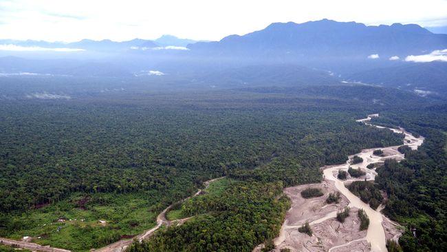 Dua nakes sempat hilang saat penyerangan Kelompok Kriminal Bersenjata (KKB) di Papua. Mereka ditemukan di jurang pada Rabu (15/9). Satu hidup, satu meninggal.