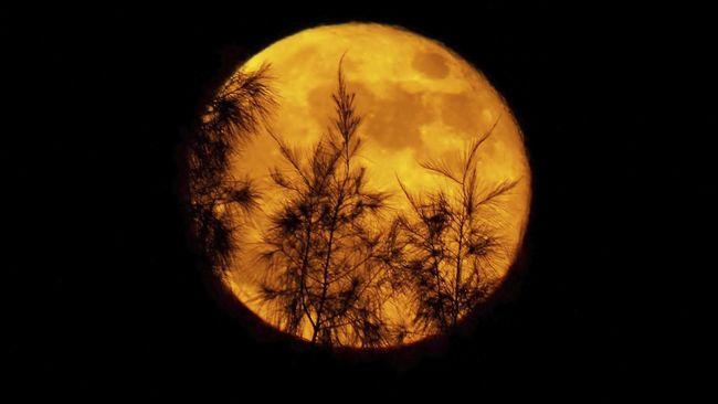 Indonesia dipastikan tak akan bisa menyaksikan fenomena langka gerhana bulan Supermoon.
