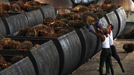 Aprobi Respons Subsidi Rp7,5 Triliun Lima Konglomerat Sawit