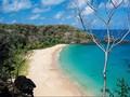 Turis Palsukan Tes Covid Demi Masuk Pantai Terindah di Dunia