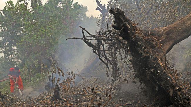APP berkomitmen melibatkan partisipasi masyarakat untuk mencegah kebakaran hutan dan lahan melalui program Desa Makmur Peduli Api.
