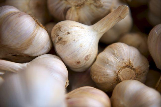 Impor bawang putih kini telah jadi ajang bisnis sekaligus perburuan para pemburu rente yang menggiurkan.