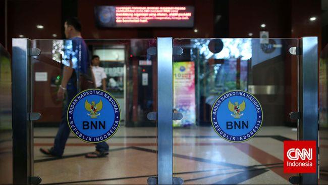 BNN menyebut jaringan yang ada di Indonesia adalah sindikat narkoba. Penyebutan kartel untuk jaringan yang punya kemampuan produksi narkoba.