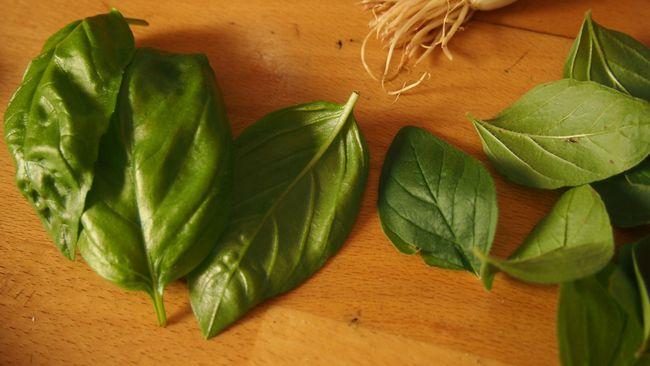 Sejumlah herbal memiliki kandungan yang dapat meningkatkan fungsi pembuluh darah sehingga mampu menurunkan risiko hipertensi.