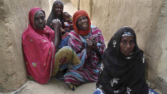 perdagangan kulit harimau pedagang valas perempuan di nigeria