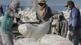 Pupuk Indonesia Akui Penjualan Mulai Terpengaruh Pupuk China