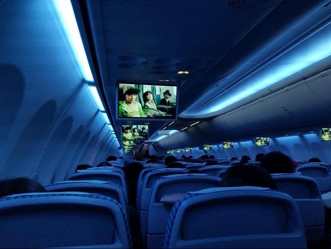 Lima Cara Bertahan Hidup saat Kecelakaan Pesawat