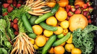 5 Rekomendasi Belanja Sayur dan Ikan Daring