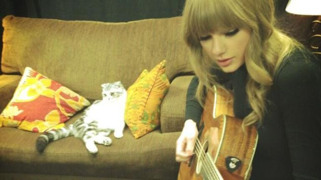 Olivia Dan Meredith Sobat Berbulu Taylor Swift