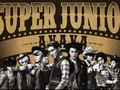 Ribuan Penggemar Mulai Padati Area Konser Super Junior