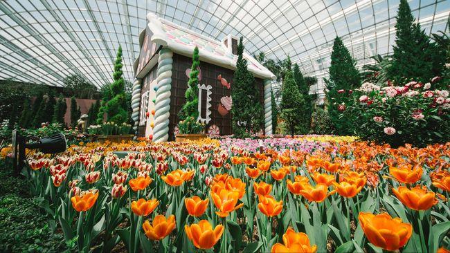Musim semi adalah salah satu momen yang ditunggu-tunggu oleh banyak orang untuk berwisata, karena harga tiket yang jauh lebih murah ketimbang musim dingin.