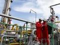 OPEC Imbangi Produksi Saat Iran Dihukum, Harga Minyak Naik