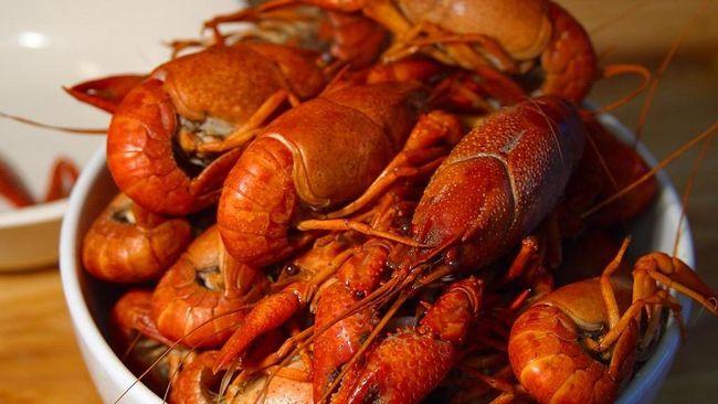Sebelum dinikmati, Anda perlu tahu cara memilih dan menyajikan lobster yang tepat.