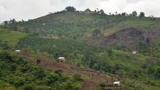 Cerita 5 Dusun Kecil Jambi Tembus Pasar Karbon Dunia