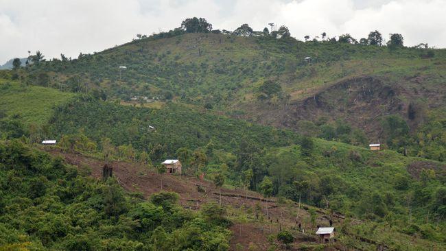 Cerita tentang orang-orang desa yang turut andil memberikan napas panjang warga dunia dari hutan yang tersisa di Pulau Sumatera.