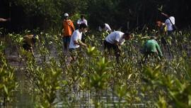 Digugat PKPU, Pertamina Foundation Beberkan 16 Bukti