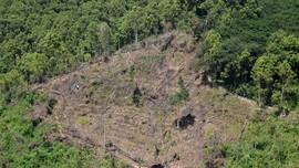 KLHK Ungkap Perhutanan Sosial Baru Capai 4,4 Juta Hektare