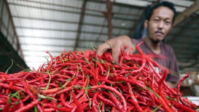 Pedagang cabai merah merapikan dagangannya di pasar tradisional sekip, Palembang, Kamis (21/5). Harga cabai merah keriting di beberapa pasar tradisional di Palembang mengalami kenaikan dari Rp15 ribu menjadi Rp30 ribu per kilogram akibat berkurangnya pasokan. ANTARA FOTO/Nova Wahyudi/Rei/nz/15.