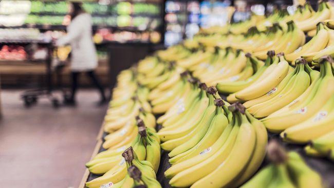 Meski memiliki banyak jenis, hanya ada varian tertentu pisang yang baik untuk diet dengan kandungan nutrisi yang lengkap.