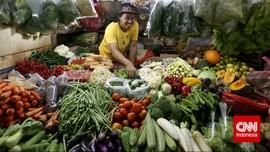 Harga Cabai Rawit Kian Pedas di Rp37.300 per Kg
