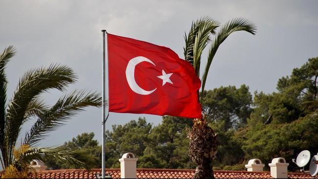 Turki Sebut RI Sudah Sepakat Beri Nama Jalan Ataturk