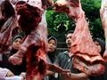 Impor Daging Kerbau India 25 Ribu Ton Masuk Sebelum Ramadan