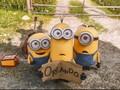 Bagaimana Minions Bisa Bilang 'Terima Kasih' di Film