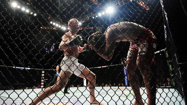 Sebagai bisnis, UFC memiliki pendapatan ratusan juta dolar. Namun, tak ada yang tahu berapa sebenarnya pemasukan seorang petarung UFC.
