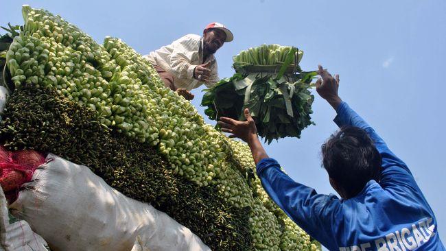 Petani menaikkan hasil panen sayur sawi ke atas mobil bak terbuka di Desa Situdaun, Tenjolaya, Bogor, Jabar, Senin (22/6). Permintaan sayur sawi mengalami peningkatan dari 5 kwintal menjadi 9 kwintal/hari dengan harga jual naik dari Rp1500 menjadi Rp2000/kg untuk memenuhi pesanan pasar induk selama bulan Ramadan. ANTARA FOTO/Arif Firmansyah/Rei/nz/15.