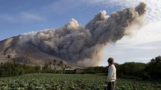 Abu Gunung Sinabung Tunda Aktivitas Turis di TN Leuser