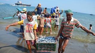 Ikan, Cumi, dan Jeritan Nelayan di Tengah Tekanan Corona