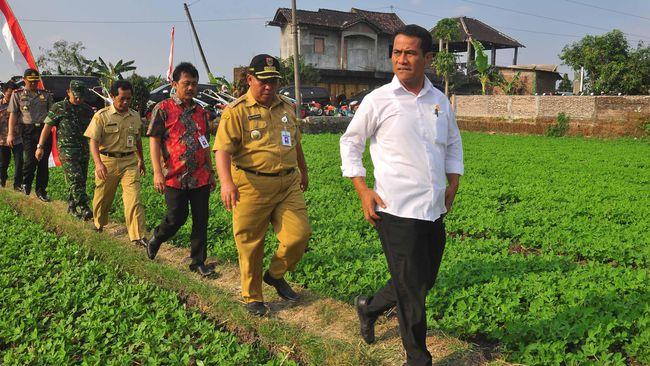 Menteri Pertanian Amran Sulaiman mengklaim 291 aturan sektor pertanian (Permentan) yang dicabut bikin investasi moncer hingga Rp270 triliun.
