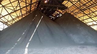 Produksi Tambang Freeport Cuma 60 Persen di Masa Transisi