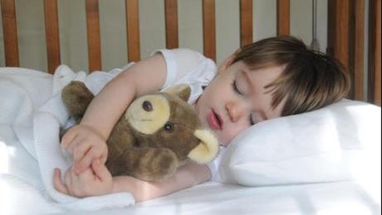 Tidurlah sayang, anakku manis...