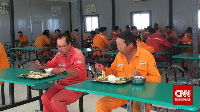 Ada 700 pekerja China yang berada di lokasi proyek pembangunan pabrik semen di Bayah, Lebak, Banten. Mereka bekerja bersama sekitar 1.700 pegawai lokal.