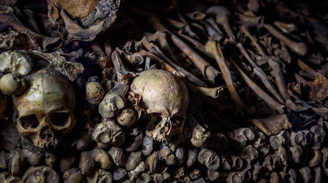 Sekelompok ilmuwan menemukan ratusan ribu tulang belulang hewan hingga manusia di sebuah gua di barat laut Arab Saudi pada 22 Juli lalu.