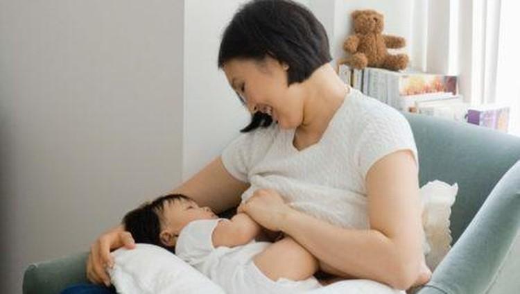 Jengkol bisa jadi makanan favorit beberapa orang, termasuk ibu yang sedang menyusui.