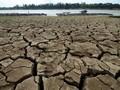 Chile Alami Kekeringan di Tengah Krisis Corona