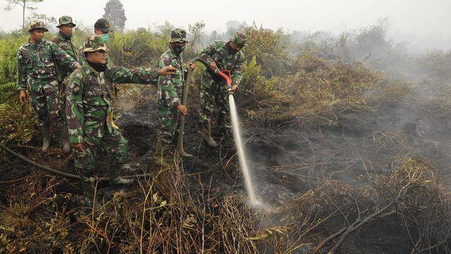 Panglima TNI berpesan agar para prajurit tidak mudah menyerah dalam memadamkan api dan memperhatikan faktor keamanan pada situasi sulit sekalipun.