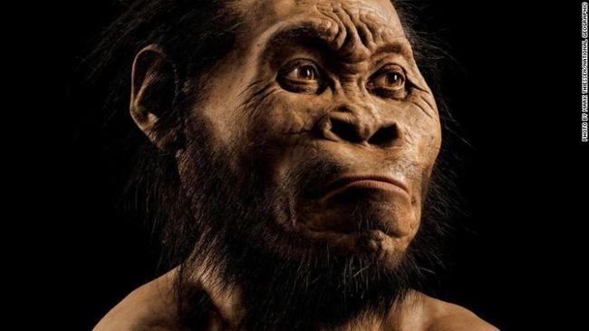 DNA manusia tak sekedar menyimpan sejarah siapa orang tua kandung, tapi bisa ditarik hingga 180 ribu tahun lalu untuk megetahui sejarah nenek moyang manusia.